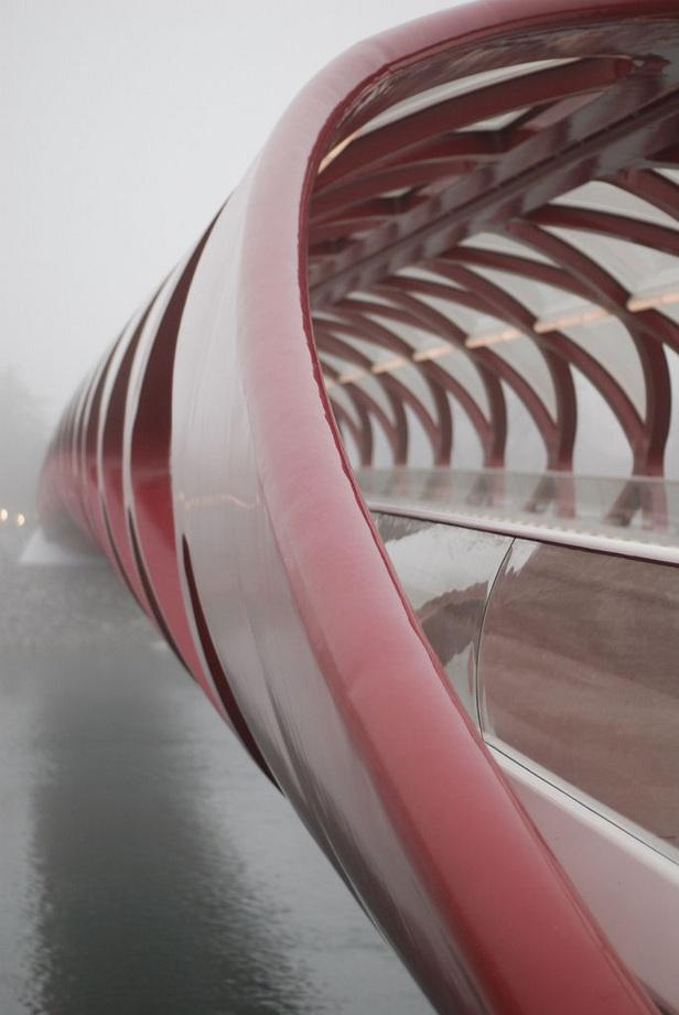 Peace Bridge, Calgary, Canada. Oh Canada I love living here so much to explore