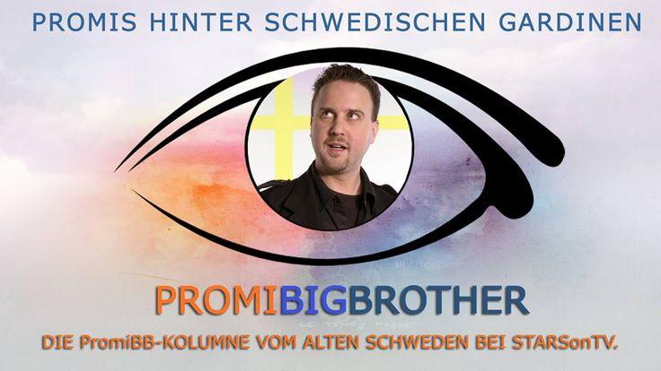 #PromiBigBrother 2013: Promis hinter schwedischen Gardinen #Kolumne #PromiBB #bbde #SAT1