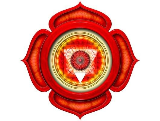 Муладхара (корневая) чакра - первый энергетический центр