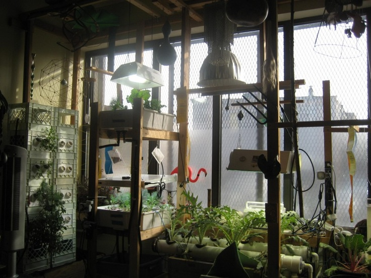 Brooklyn Spaces visits Boswyck Farms and interviews founder Lee Mandell