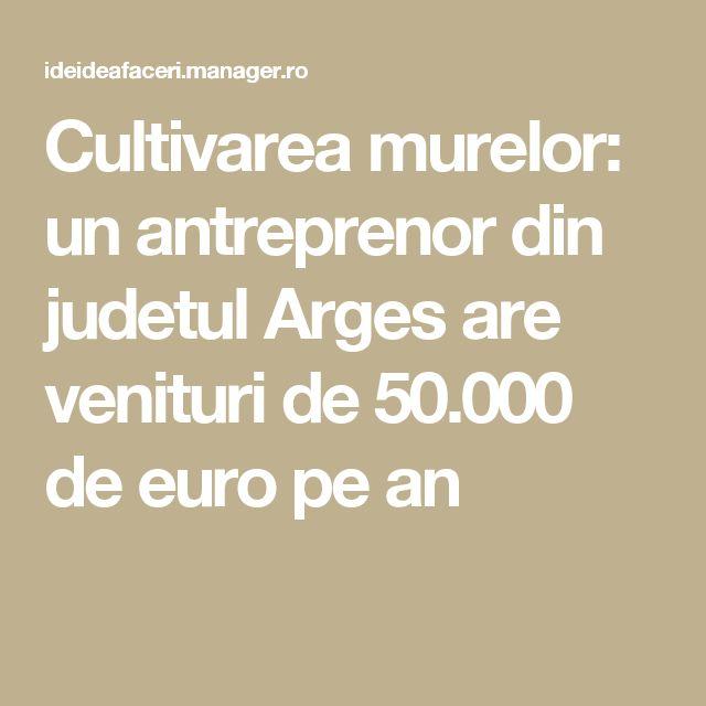 Cultivarea murelor: un antreprenor din judetul Arges are venituri de 50.000 de euro pe an