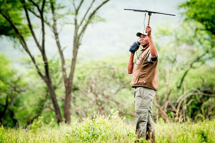 Slapen onder de sterren in Zuid-Afrika -  Somkhanda Game Reserve,
