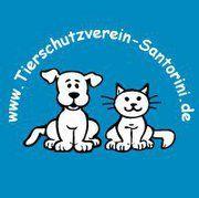 Tierschutzverein Santorini e.V. - aktiver Tierschutz sowie Vermittlung Hunde und Katzen aus Griechenland und Spanien sowie Hilfe fuer Esel auf Santorin Mallorca