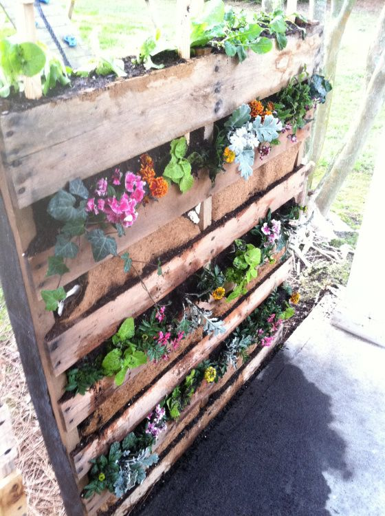 17 best images about landscaping ideas on pinterest for Vertical pallet garden bed