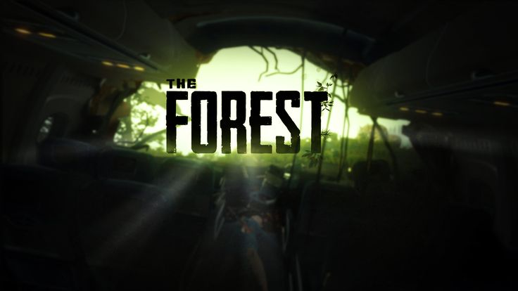 The Forest is an Open world, survival horror game that sees the player crash land on an island inhabited by cannibals. Armed with nothing except a small axe, survival book and knowledge of the land the player must find food, water, build shelter and try to find the other plane passengers, all while being stalked by a cannibalistic tribe.