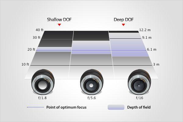 Focusing Basics   Aperture and Depth of Field