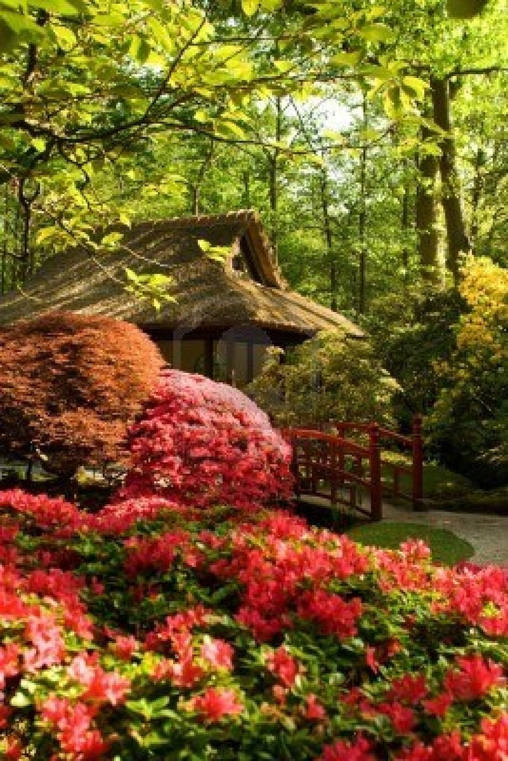 200 best Japanese gardens images on Pinterest | Japanese gardens ...