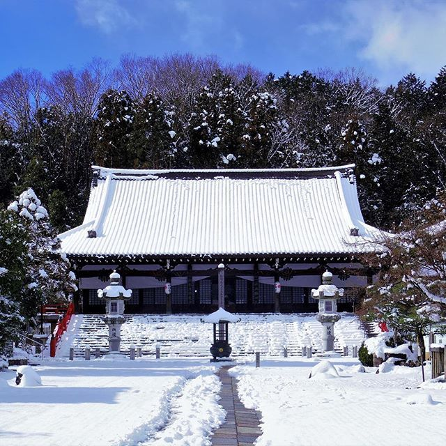 Snowy Japan ❄️🇯🇵❄️ // Havas Japán ❄️🇯🇵❄️ #szegedbudokan #martialarts #academy #szeged #budokan #japan #japanese #garden #trip #travel #budo #inspiration #warrior #spirit #nature #culture #temple #shrine #mylife #lovewhatyoudo #white #snowy #jingu #winter #cold #snow #buddhism #shinto #blessing #protection