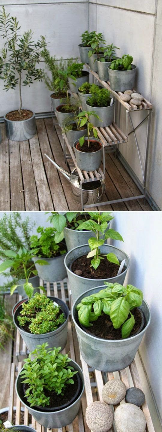 Add a DIY herb garden to your modern garden room by using benches to make different heights.