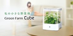 U-ING Green Farm Cube Hydroponic Grow Box