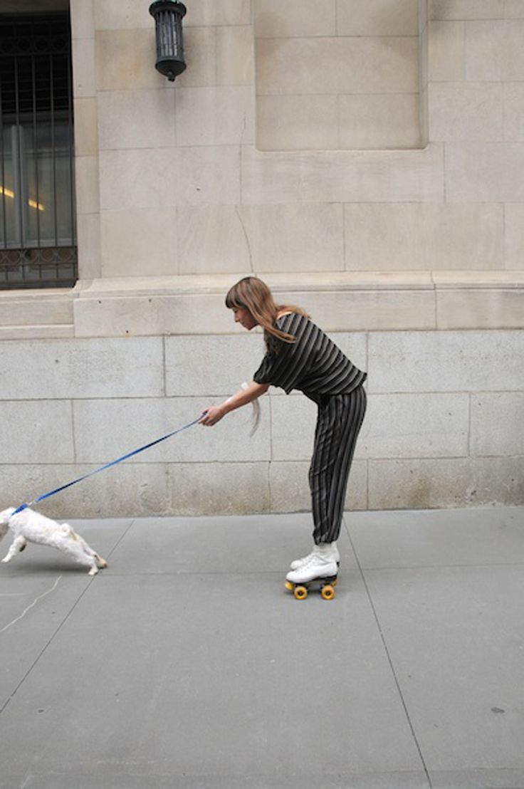 Roller skates for dogs - Ha Love It Need To Do This With My Dogs Lol