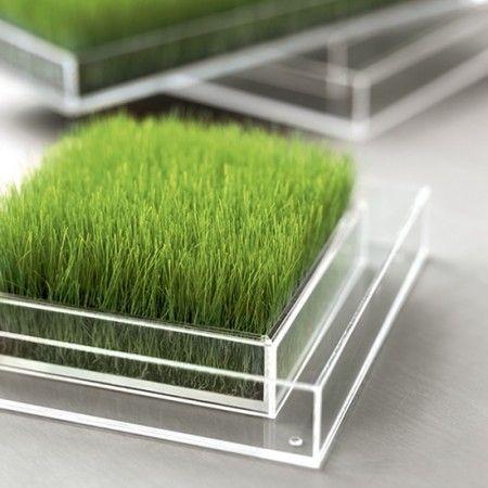 Resultados de la Búsqueda de imágenes de Google de http://www.leblogdeco.fr/wp-content/2009/10/carre-de-verdure-chlorophylle-cristal-450x450.jpg