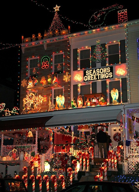 213 best A Tropical Christmas and Holiday Lights Around the World