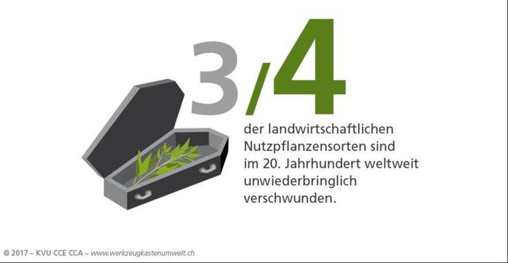 Der Artenverlust macht uns Sorgen. Nutzpflanzensorten sind verschwurnden. Werkzeugkastenumwelt