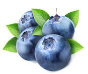 Owoce borówki zawierają  szereg witamin, w tym m.in. witaminę C, A, B1, B2 i PP.