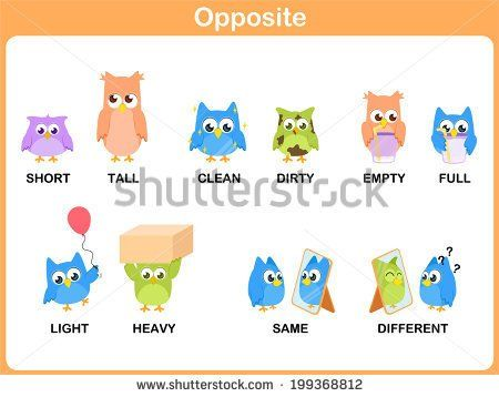 1000+ ideas about Opposite Words In English on Pinterest | English ...