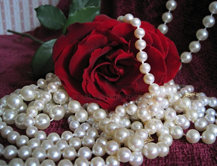 roses and pearls - photo #47