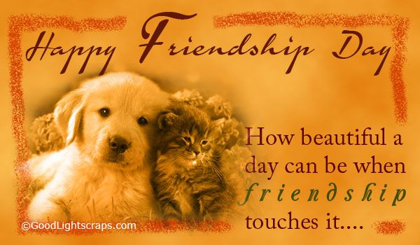 {46 Best} Happy Friendship Day Wishes For Angry Friend: Friendship Day Wishes ~ Friendship Day Wishes, Friendship Day Quotes, Friendship Day Wallpaper, Friendship Day Status