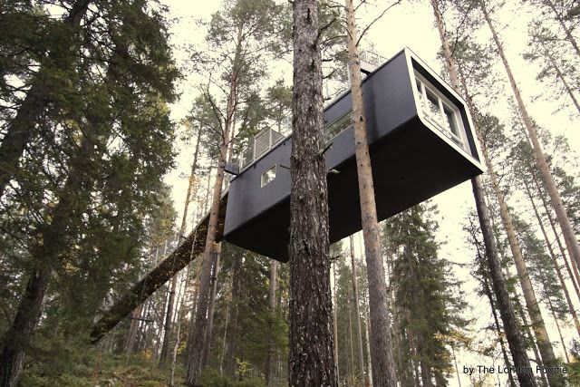 Amazing #treehouse in Harads forest, Sweden