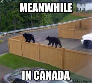 meanwhile in canada - Bing Images