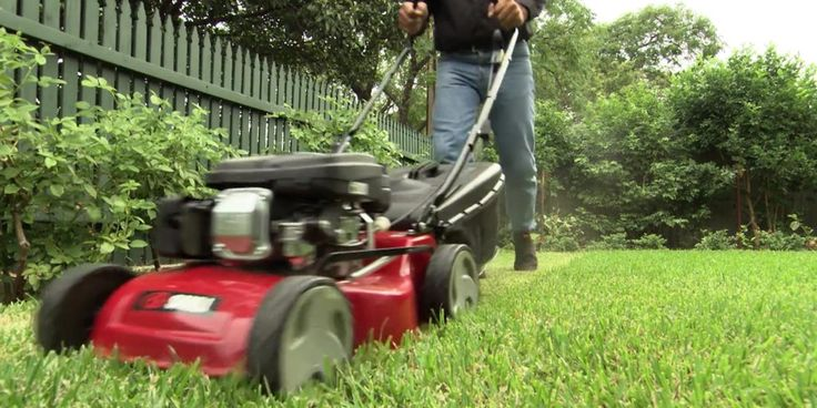 Working with a lawn dethatcher is really simple. You can always read the manual of use when you aren't sure. Ideally with a great dethatcher you will easily enjoy the beauty of your lawn.
