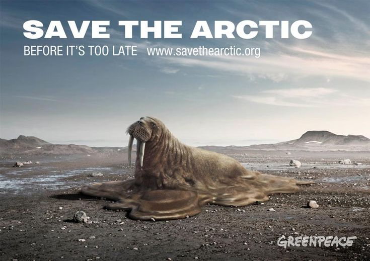 Let's not let the Arctic melt any further: savethearctic.org    Thanks to elena lilac for this amazing image.