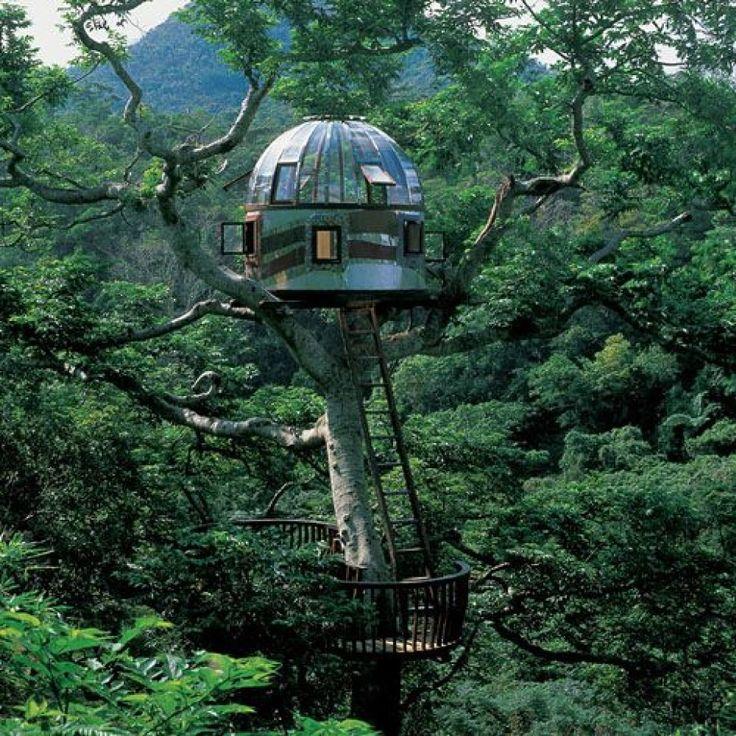 observatory style treehouse