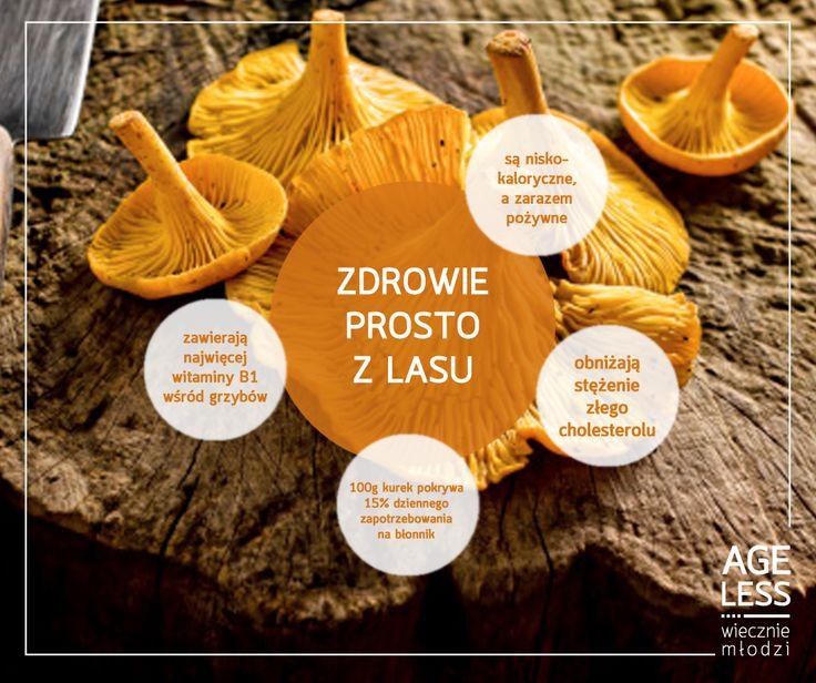 Wiedzieliście, że kurki są jednymi z najwartościowszych grzybów, jakie możecie spotkać w lasach? Warto urozmaicić o nie swoją dietę!  www.ageless.pl #ageless #wieczniemlodzi #wiecznamlodosc #grzyby #kurki #zdrowie