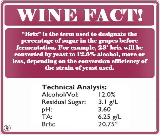 The  Best Wine Facts Ideas On   Wine Tasting