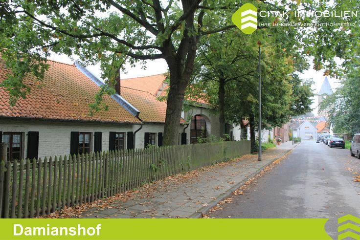 Köln-Esch-Auweiler-Damianshof