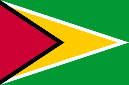 The current flag of Guyana was officially adopted on May 20, 1966.           The red is said to represent the dedication of the people for reform, yellow is the symbol of wealth, green represents the vast forests and the yellow arrow is symbolic of a bright and hopeful future.