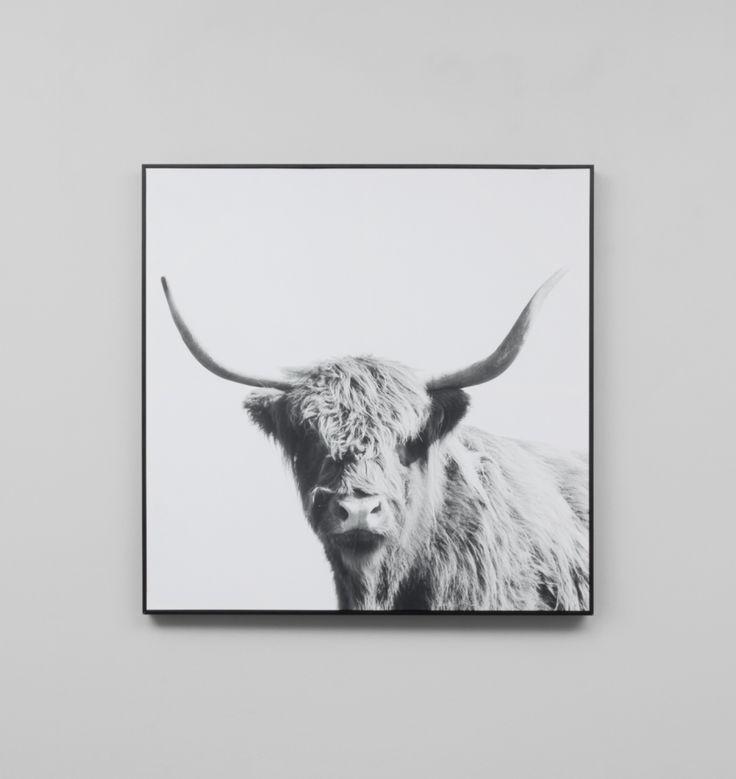 Highland Companion | Grey | Framed Canvas Print | The Block Shop