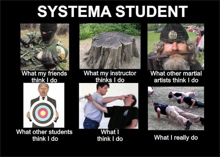 La vérité sur le Systema