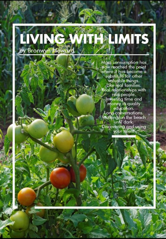 Living with Limits by Bronwyn Howard