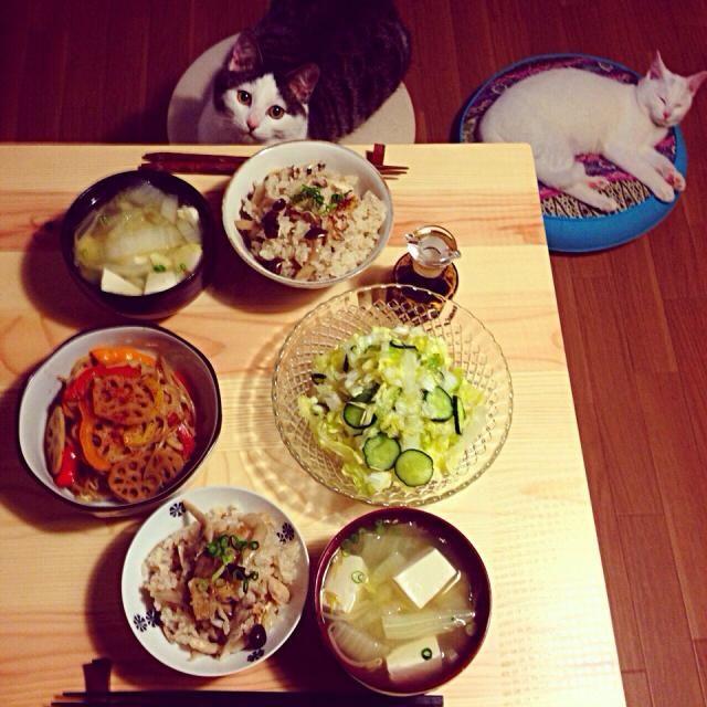 家族が増えた♡ - 17件のもぐもぐ - 炊き込みご飯。レンコンとパプリカきんぴら。白菜と胡瓜の塩もみ。お味噌汁。 by naou