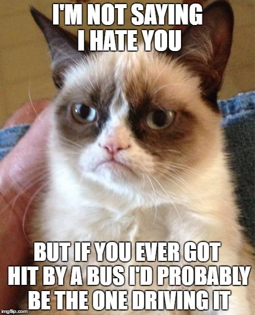 Grumpy Cat Meme | I'M NOT SAYING I HATE YOU BUT IF YOU EVER GOT HIT BY A BUS I'D PROBABLY BE THE ONE DRIVING IT | image tagged in memes,grumpy cat | made w/ Imgflip meme maker