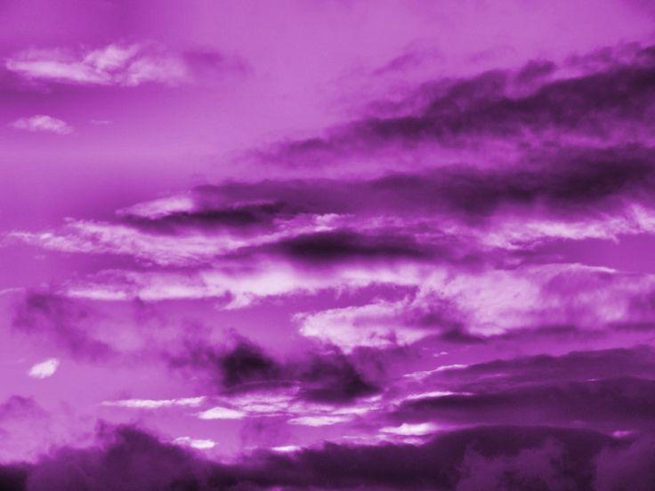 Purple-Wallpaper-purple-558782_1024_768.jpg (1024×768)