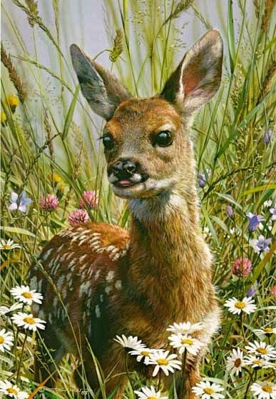 "Hi gals, let's continue with the animal theme and do ""Animal Art"" for 12-4.  Lots of great pins out there ♥ Carl Brenders artwork"