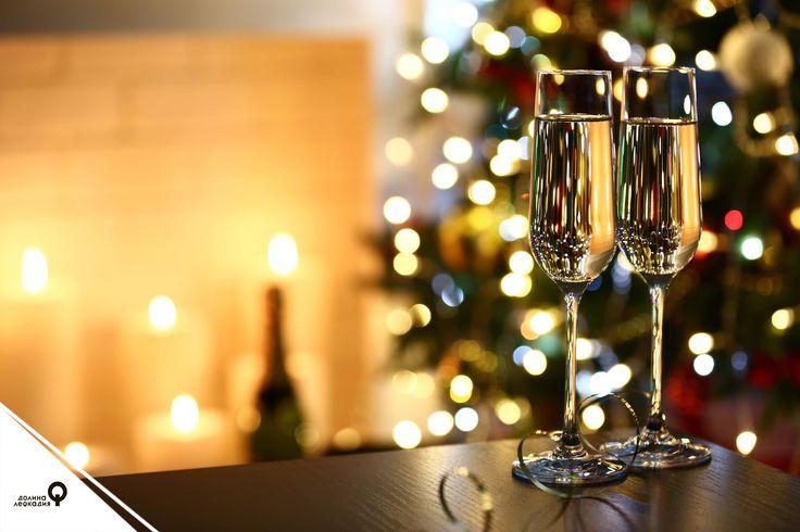 В долине Лефкадия можно прекрасно отдохнуть не только с семьёй, но и с коллегами. Мы приглашаем вас провести необычный корпоратив и удивить команду. К вашим услугам — конференц-зал, VIP-переговорная, ресторан «Винный дом» с верандой, праздничное меню от шеф-повара, банкетный зал, уютный отель, организация трансфера, креативный мастер-класс, экскурсии по долине и многое другое. Будьте уверены: в долине Лефкадия для вас и ваших коллег будет организована яркая новогодняя вечеринка!
