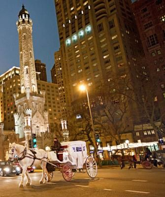 Chicago S Thanksgiving Day Parade See More A Carriage Ride Lavish Buffet At Historic Hotel