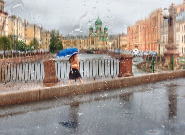 rainy petersburg, sankt-peterburg, city