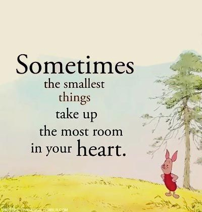 .♥♥3Piglets, Small Things, Heart, Motivation Quotes, Quotes Sayings, Winnie The Pooh, Inspiration Quotes, Smallest Things, Quotes And Sayings
