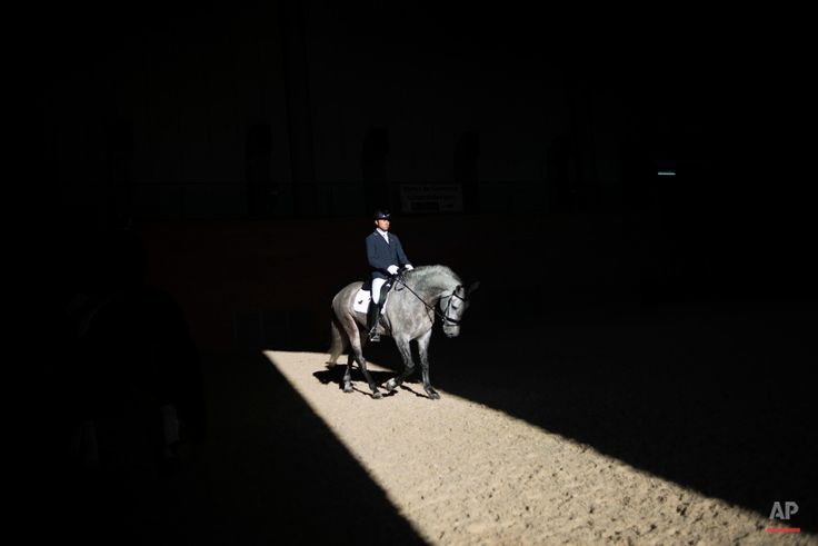 A horseman rides a purebred Spanish horse during the Sicab International Horse Show, which is dedicated in full and exclusively to purebred Spanish horses, in the Andalusian capital of Seville, southern Spain, Thursday, Nov. 19, 2015. (AP Photo/ Laura Leon)