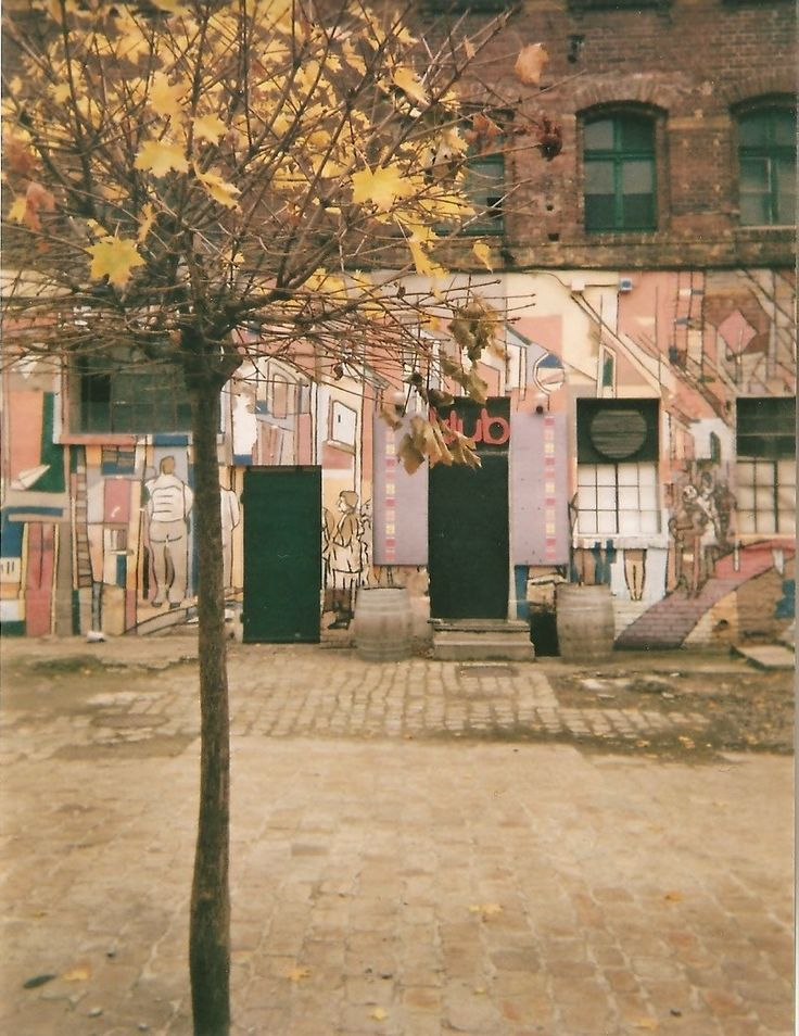 Basia Gębarowska - Lomografia 2014 #lomo #photo #komwiz #tree