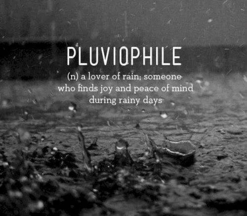 Cold Rainy Day Funny Quotes: Pluviophile Rainy Days Quote Definition