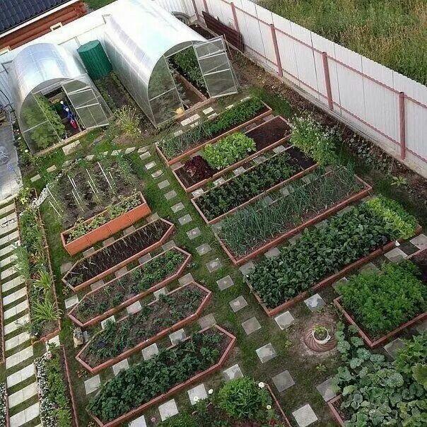 les 706 meilleures images du tableau jardin plantation sur pinterest potager id es pour le. Black Bedroom Furniture Sets. Home Design Ideas