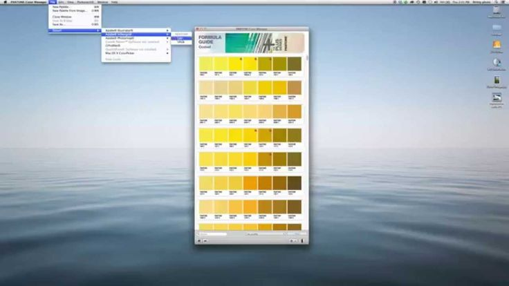 PANTONE COLOR MANAGER Software Overview