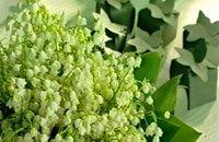 Liljekonvaljer och godisaskar i grönt