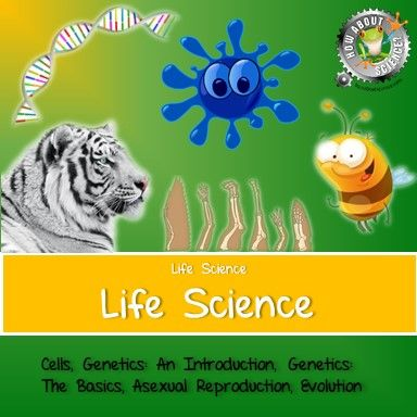 The Life Science Unit contains lessons on Cells, Genetics: An Introduction, Genetics: The Basics, Asexual Reproduction and Evolution, all of which are available for purchase individually. These lessons support MS-LS1-1 (From Molecules to Organisms: Structures and Processes), MS-LS3 (Growth, Development and Reproduction of Organisms), MS-LS3-2 (Heredity: Inheritance and Variation of Traits) and MS-LS4 (Biological Evolution: Unity and Diversity) of the NGSS.