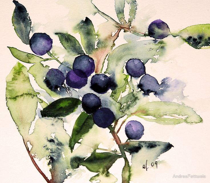 Blue Berries by AndreaFettweis